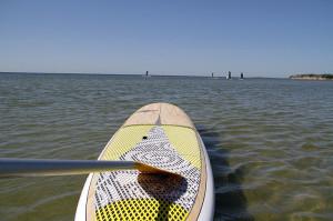 SUP Board Paddel